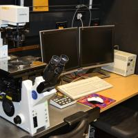 Olympus FluoView FV1000 confocal laser scanning microscope