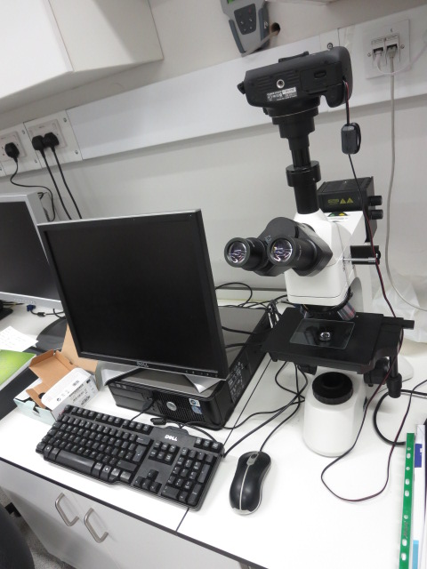 Universal Compound Microscope