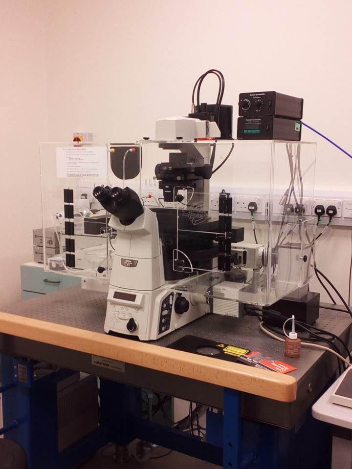 Confocal Microscope (IIT. Royal Free Campus)