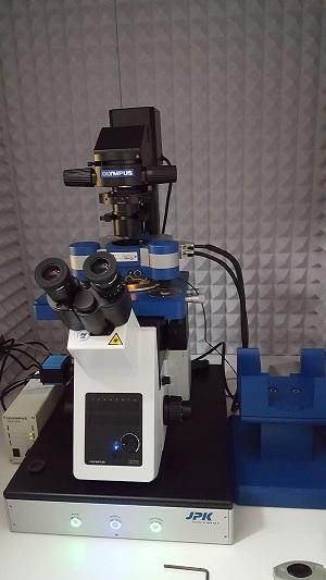 JPK Nanowizard Ultra Speed